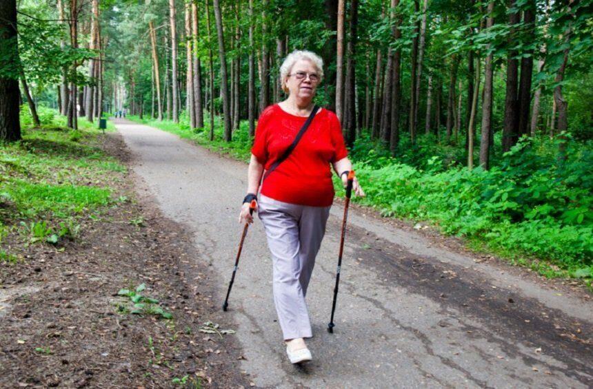 скандинавская ходьба пожилые картинка пассажиры едут одной