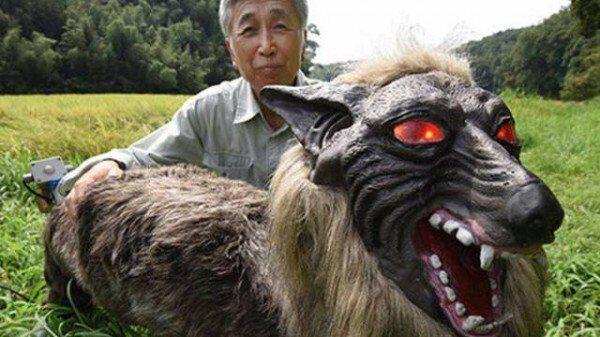 волко-монстр