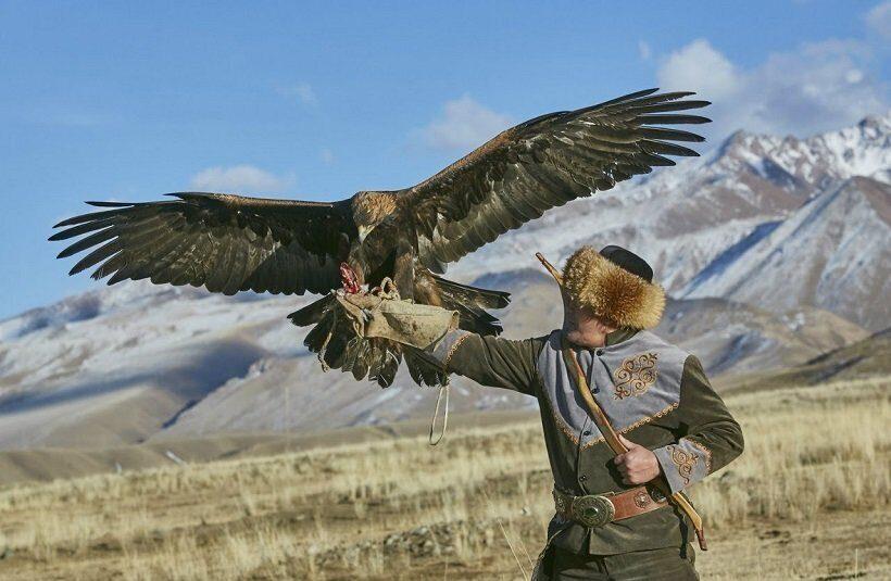 Ловчие птицы Киргизии