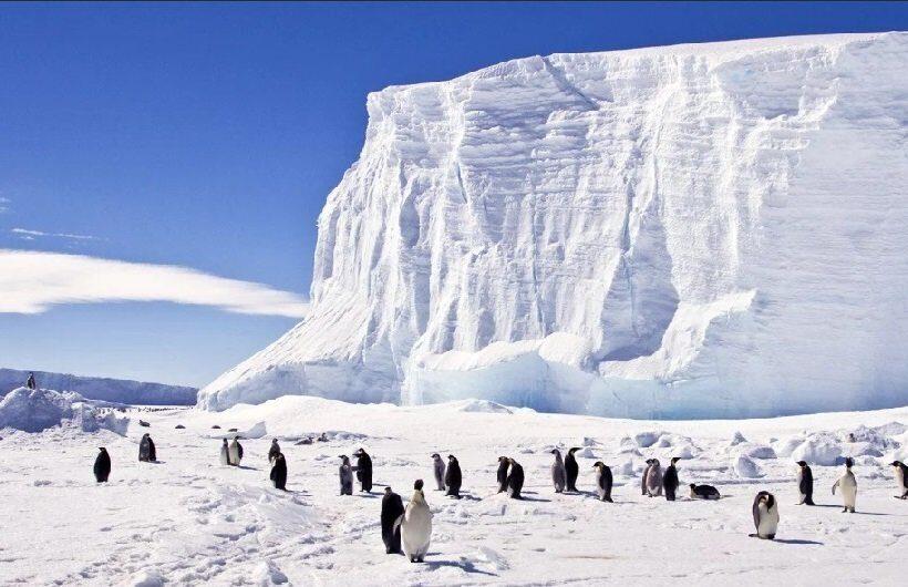Ученые предлагают построить стену, которая защитит ледяные щиты Антарктиды от таяния