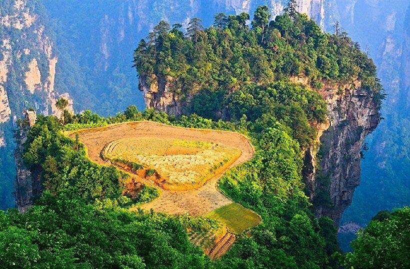 лесные пейзажи в Китае