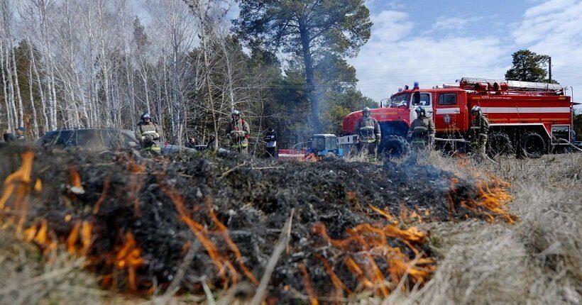 Ежегодный ущерб лесной отрасли России
