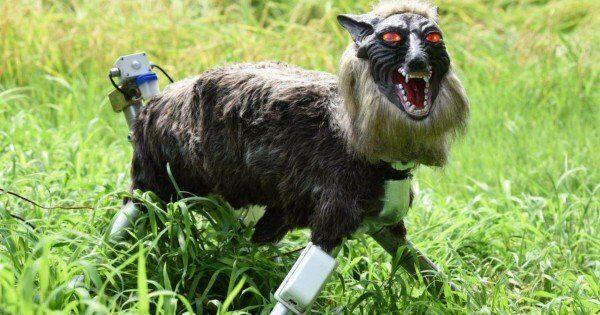 робот волко-монстр