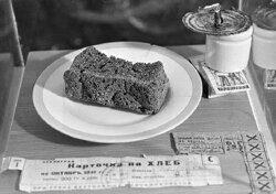 Блокада Ленинграда: история 872 дней трагедии и героизма