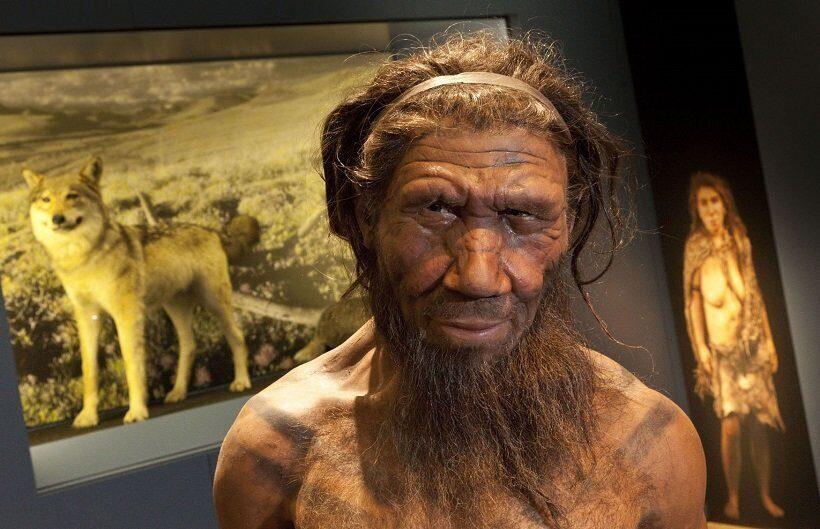Предки современных людей защищались от вирусов неандертальскими генами