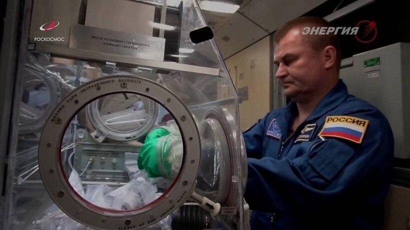 Российские ученые хотят создать модуль на МКС для выращивания человеческих органов