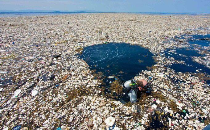 Терміново еко-новини