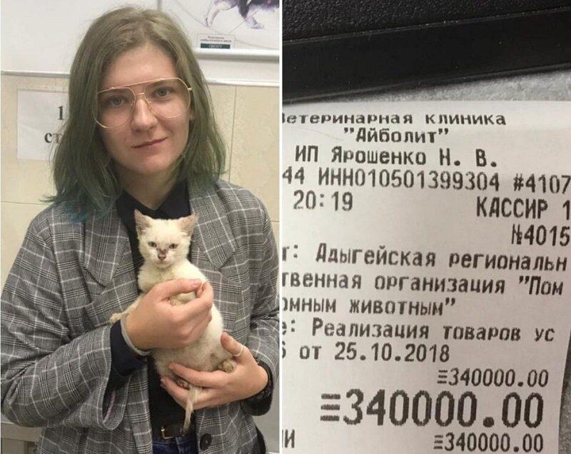 pozhertvovavshuyu_priyutu_tret_milliona_studentku_zasypali_prosbami_o_pomoshchi.jpg