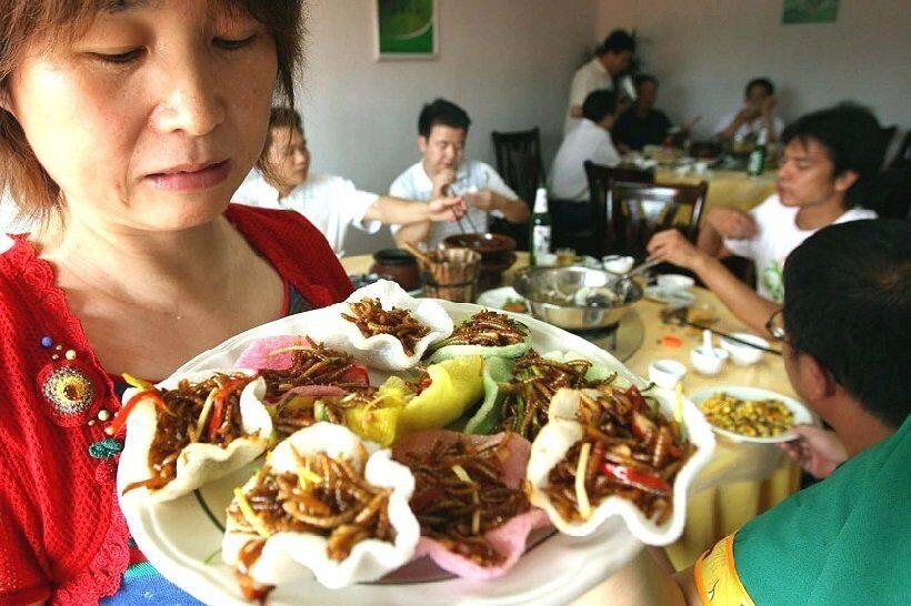 Китайские повара приготовили блюдо для храбрых духом едоков