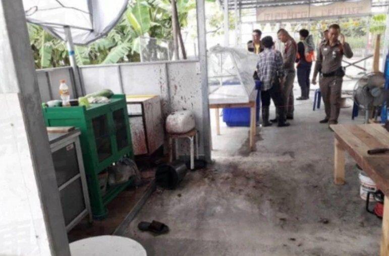 В Таиланде недовольного клиента ресторана скормили вегетарианцам