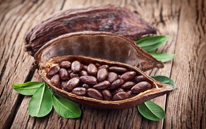 Семена какао были известны аборигенам Южной Америки более 5 тыс. лет назад