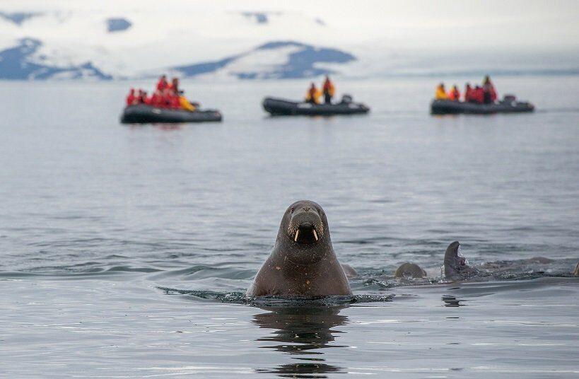 Ученые из Норвегии, РФ и США разработают на Ямале стратегии устойчивого развития Арктики